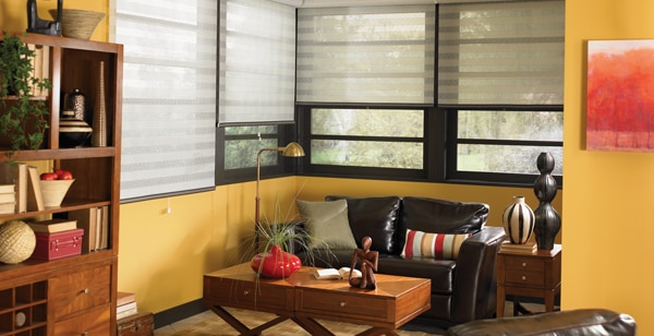 Colorful accessories and blinds for Washington homes