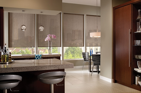Source: Blindsgalore - Comfortex Envision Solar Shades