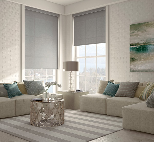 Source: Roller Shades from Blindsgalore
